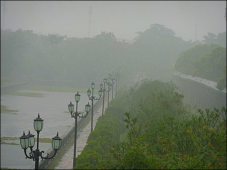 Hue-in-the-rain
