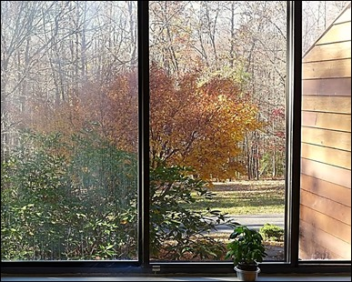 Autumn Diorama