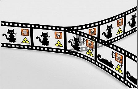 schrodinger cat - multiverse - jpg