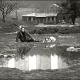 Nostalghia-Andrei-Tarkovsky_thumb.png