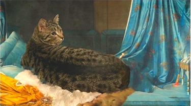 Cat-dalisque