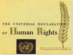 Pillar7-Society-Universal-Declaration-of-Human-Rights