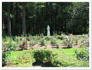 Rose garden yaddo